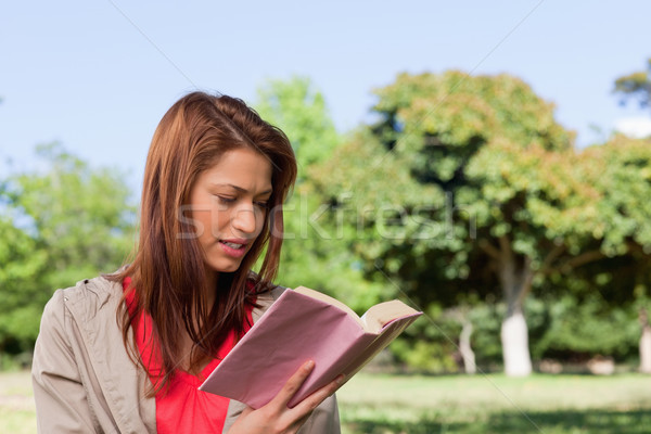 Woman with a ambitious expression on her face reading a book in a sunny area surrounded by trees Stock photo © wavebreak_media