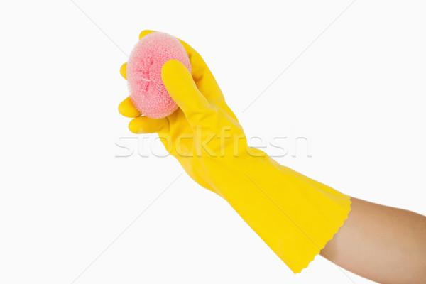 Női kéz tart rózsaszín szivacs gumikesztyű Stock fotó © wavebreak_media