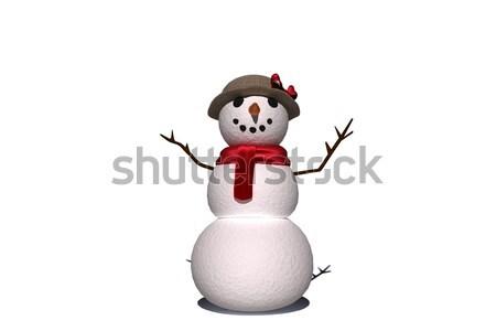 Cyfrowo wygenerowany biały śniegu kobieta Zdjęcia stock © wavebreak_media