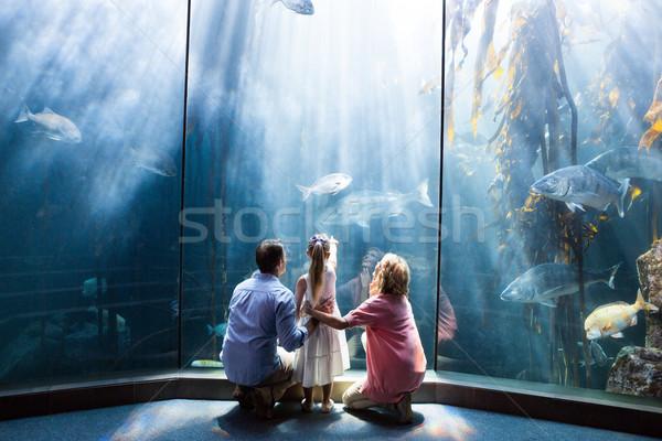 Wear view of family looking at fish tank Stock photo © wavebreak_media