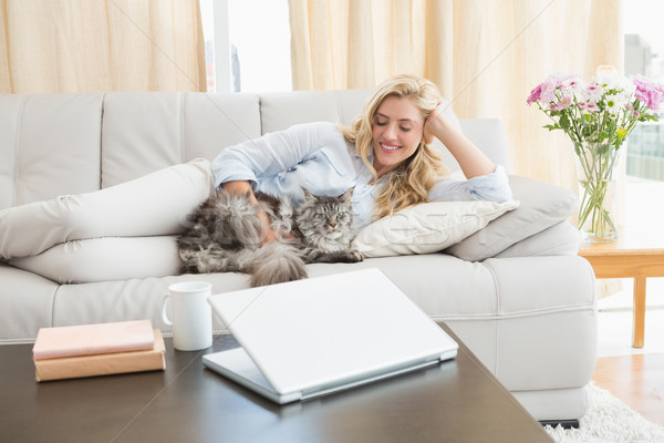 Glücklich Haustier Katze Sofa home Stock foto © wavebreak_media
