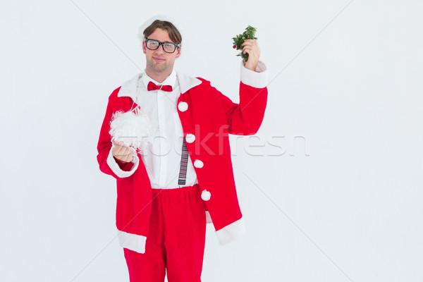 Hipszter mikulás jelmez szakáll fagyöngy fehér Stock fotó © wavebreak_media