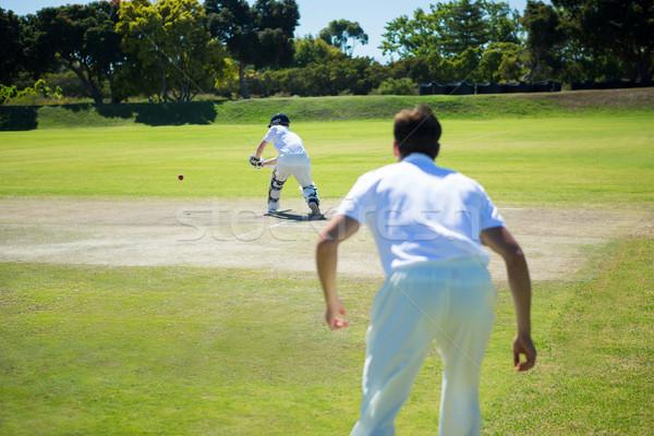Rückansicht Männer spielen Cricket Stellplatz Stock foto © wavebreak_media