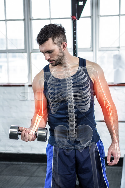 Highlighted bones of strong man lifting weights at gym Stock photo © wavebreak_media