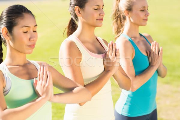 Peaceful sporty women doing yoga together Stock photo © wavebreak_media