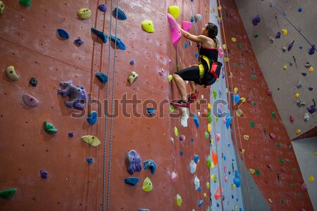 Toegewijd klimmen muur club vrouw Stockfoto © wavebreak_media