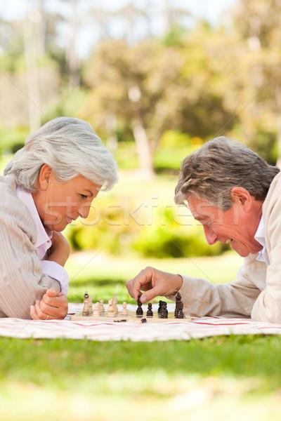 Nyugdíjas pár játszik sakk szeretet idős Stock fotó © wavebreak_media