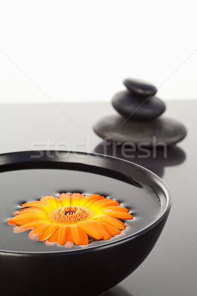 Orange schwimmend schwarz Schüssel Kieselsteine Stock foto © wavebreak_media