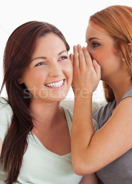 Bruna donna segreto soggiorno sorriso riunione Foto d'archivio © wavebreak_media