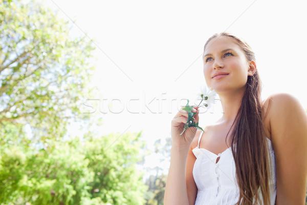 Stockfoto: Jonge · vrouw · bloem · genieten · dag · park · schoonheid