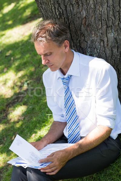 Businessman reviewing documents in park Stock photo © wavebreak_media