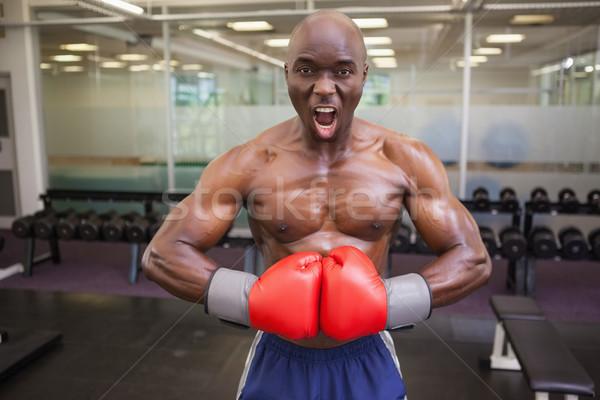 Muscular boxeador músculos saúde clube retrato Foto stock © wavebreak_media