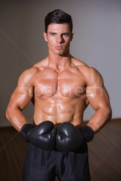 Portre gömleksiz kas boksör ayakta sağlık Stok fotoğraf © wavebreak_media