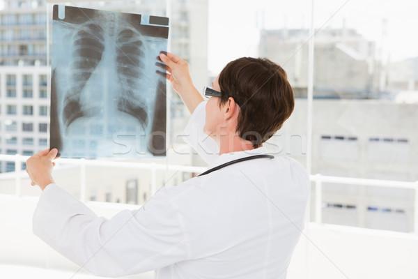 Veteriner bakıyor xray tıbbi ofis kadın Stok fotoğraf © wavebreak_media