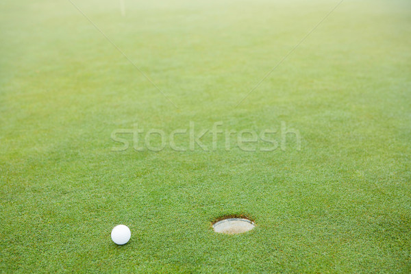 Golflabda lyuk golfpálya Stock fotó © wavebreak_media