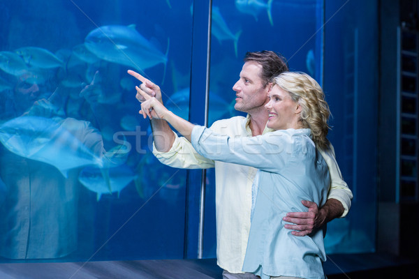 Heureux couple pointant poissons réservoir aquarium Photo stock © wavebreak_media