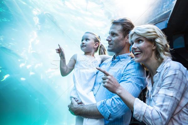 Gelukkig gezin wijzend vis tank aquarium liefde Stockfoto © wavebreak_media