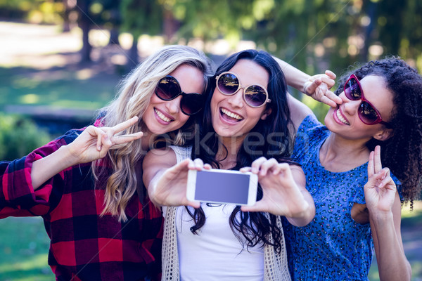 Happy hipsters taking a selfie in the park Stock photo © wavebreak_media