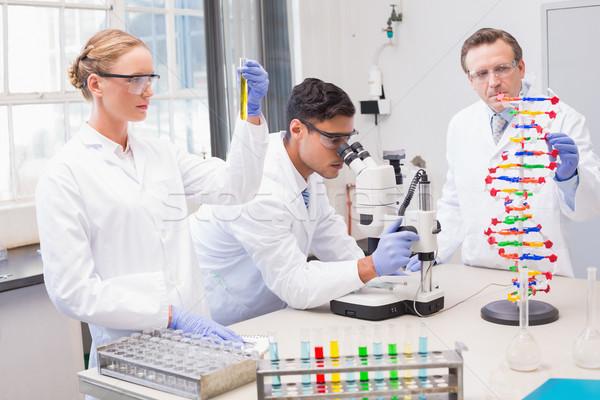 Geconcentreerde wetenschappers laboratorium vrouw medische Stockfoto © wavebreak_media