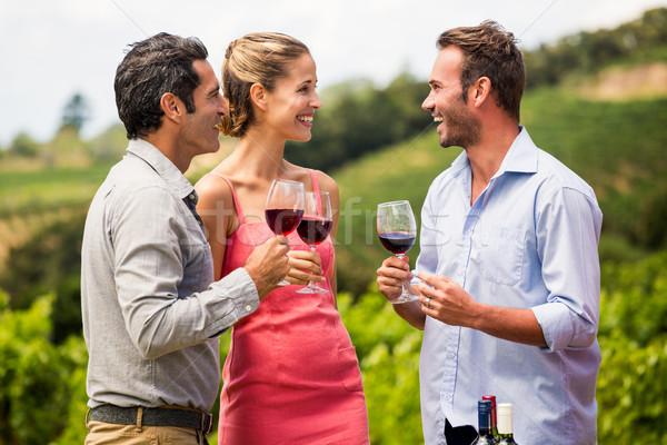 Friends enjoying red wine Stock photo © wavebreak_media