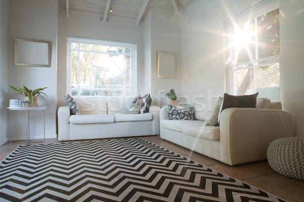 Luxus modernen home Innenraum Ansicht Baum Stock foto © wavebreak_media