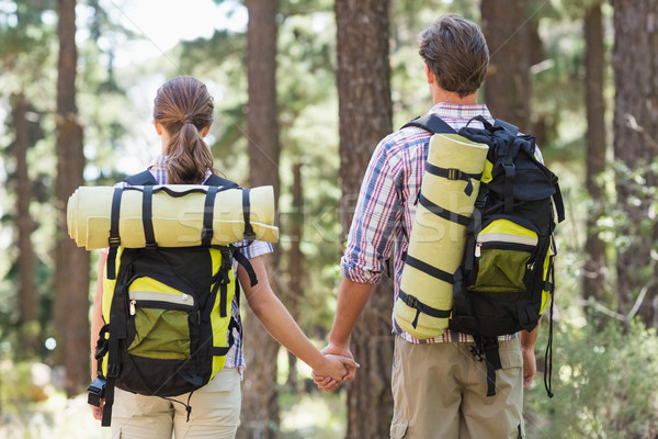 Rear view of couple holding hands and standing Stock photo © wavebreak_media