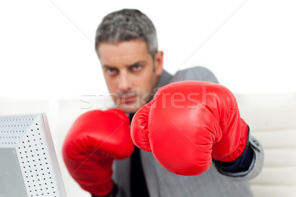 Self-assured businessman with boxing gloves  Stock photo © wavebreak_media