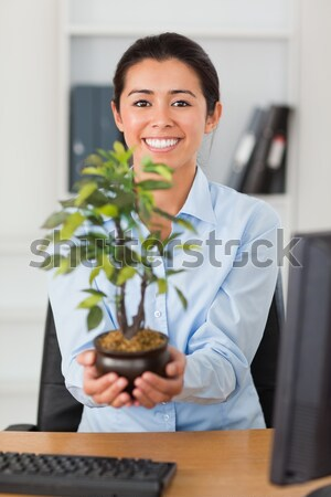 Secretary holding a plant in her office Stock photo © wavebreak_media