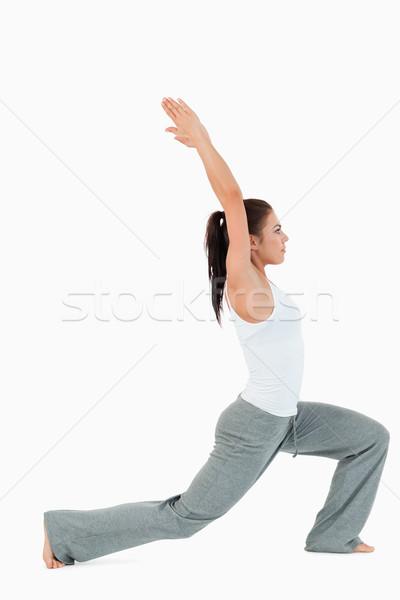 Portré nő pozició fehér szépség testmozgás Stock fotó © wavebreak_media