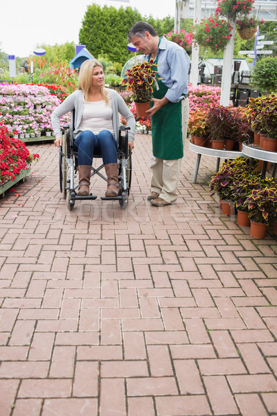 Woman in wheelchair buying potted plant in the garden centre Stock photo © wavebreak_media