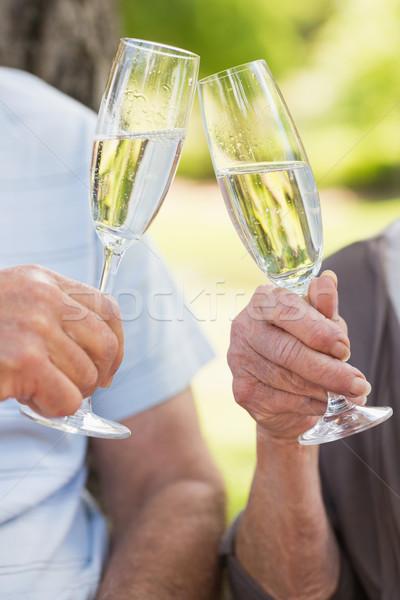 рук шампанского флейты парка Сток-фото © wavebreak_media
