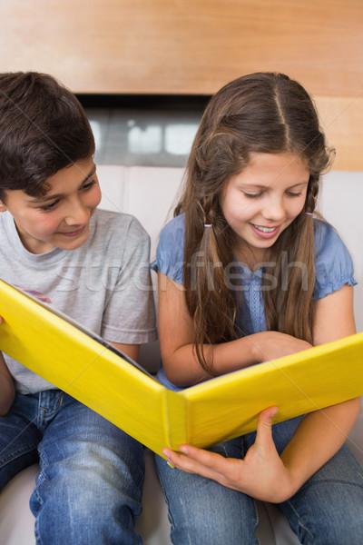 Testvérek néz fényképalbum kanapé nappali mosolyog Stock fotó © wavebreak_media