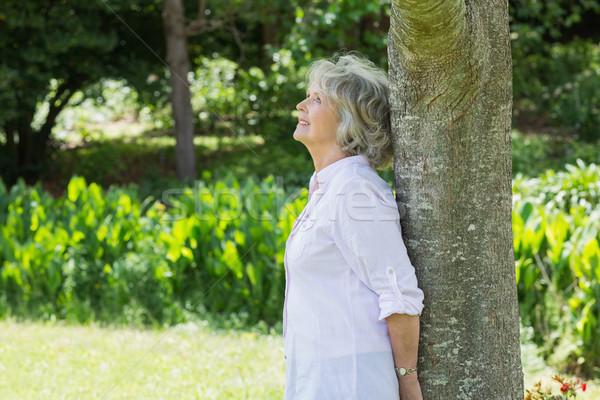 成熟した女性 木の幹 公園 側面図 草 ストックフォト © wavebreak_media