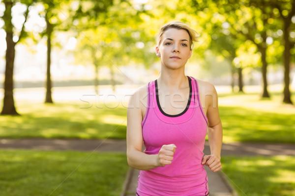 Fitt szőke nő jogging park napos idő természet Stock fotó © wavebreak_media