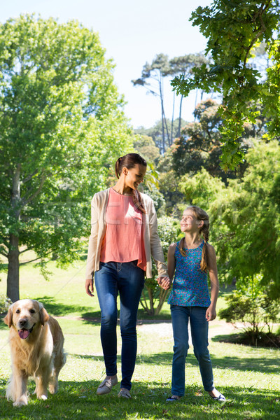 Mother and daughter walking in the park with dog Stock photo © wavebreak_media