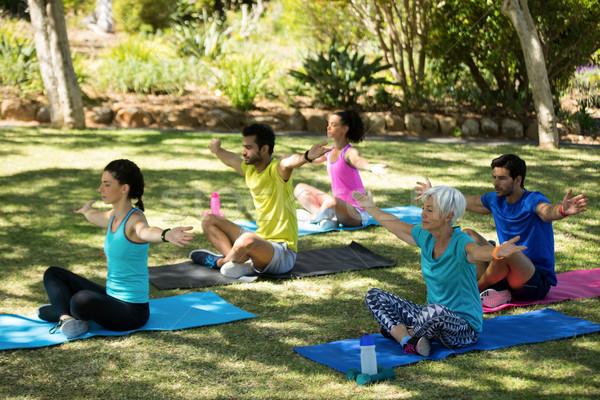 Group of people performing yoga in the park Stock photo © wavebreak_media