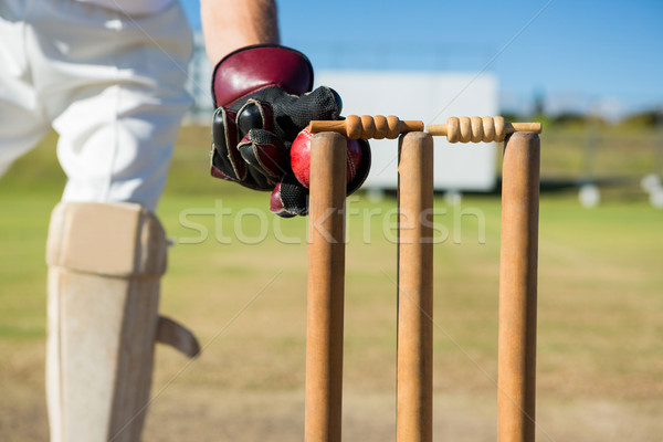 Close up of wicket keeper standing by stumps during match Stock photo © wavebreak_media