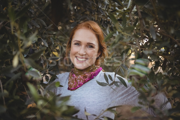 Sorridente mulher jovem em pé árvores oliva fazenda Foto stock © wavebreak_media