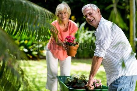 Portrait of senior couple standing with arm around in garden Stock photo © wavebreak_media