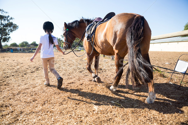 Rider girl walking with a horse in the ranch Stock photo © wavebreak_media