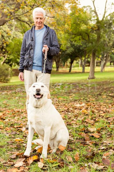 Senior man in the park Stock photo © wavebreak_media