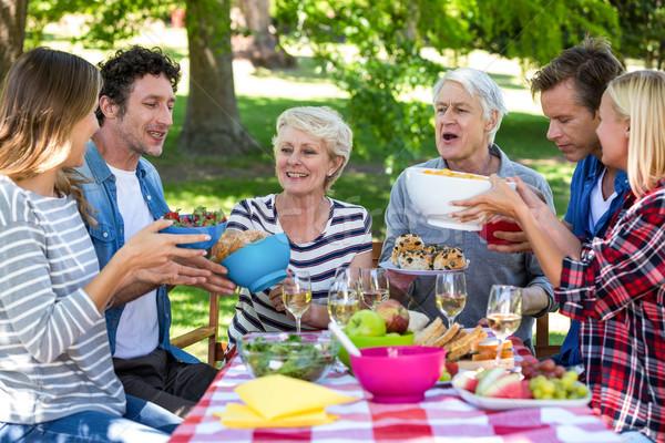 Vrienden picknick park vrouw gras tuin Stockfoto © wavebreak_media