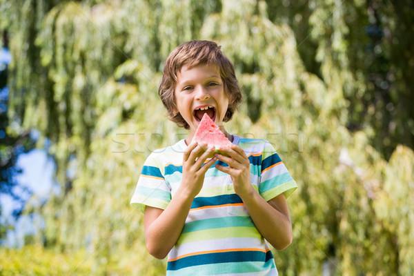 Kicsi fiú eszik görögdinnye park gyermek Stock fotó © wavebreak_media