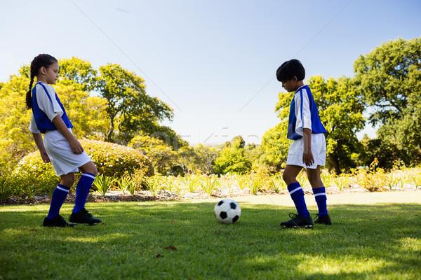 Aranyos futball játékosok játszik park lány Stock fotó © wavebreak_media
