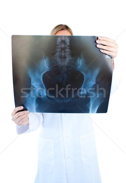 Concentrado feminino médico manter raio x branco Foto stock © wavebreak_media