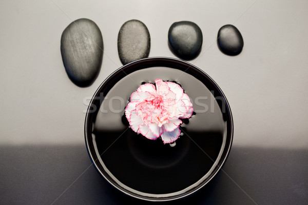 Pink and white carnation floating in a black bowl with aligned black pebbles above it Stock photo © wavebreak_media