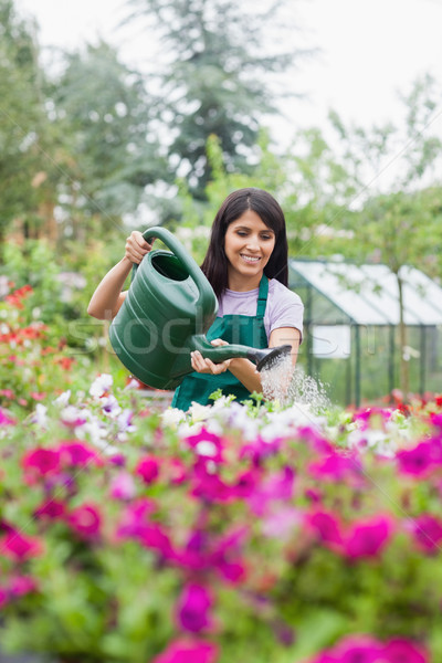 Assistent Bewässerung Blumen Freien Garten Zentrum Stock foto © wavebreak_media