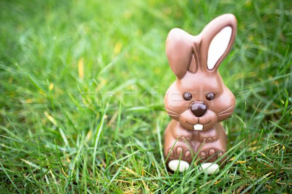 Csokoládé nyuszi ül fű fehér fülek Stock fotó © wavebreak_media