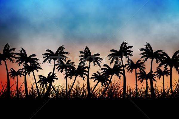 Digitalmente gerado palmeira azul laranja Foto stock © wavebreak_media
