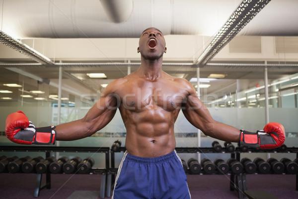 Muscular boxer shouting in health club Stock photo © wavebreak_media